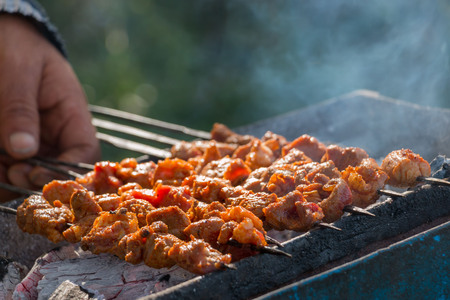 Indian lamb tikka grilled on charcoal flame grill; soft focus. Stock Photo