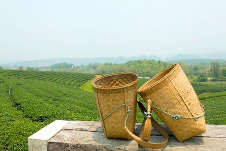 彼らは茶葉のトップ新鮮な収穫時に緑茶の葉を収集するための労働者のための竹のバスケットは、美しい緑茶農園の背景を持つ木製のテーブル上に 写真素材