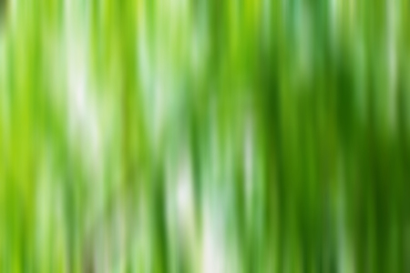 Abstract background of green motion in vertical. Banco de Imagens - 98599302