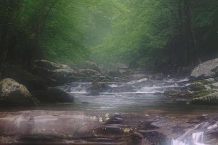 foggy smoky mountain brook Stock Photo