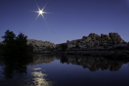 Moon Rise Over Joshua Tree - Joshua Tree National Park, California