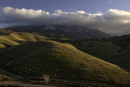 Rolling Hills and Rolling Hills, California