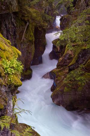Avalanche Gorge in Glacier National Park