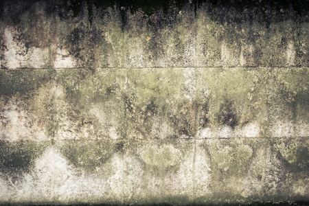 forlorn: Old dirty concrete wall. Abandonment concept. Gray, black and green background