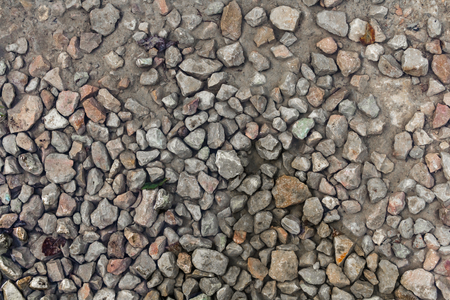 Close up wet stony soil in a autumn, abstract background