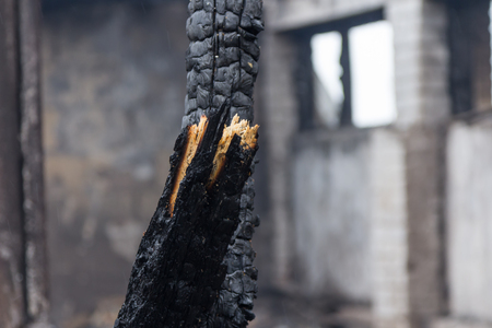 the ruins of a fully burned farm, disaster scene