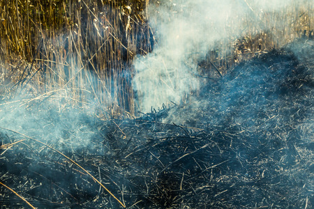 Burning grass field in the spring, Firefighters work. Nature in danger background Stock Photo - 121890237