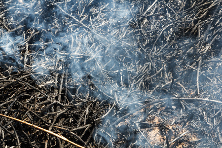 Burning grass field in the spring, Firefighters work. Nature in danger background Stock Photo