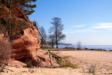 Trees and big stones at Baltic sea rocky shore near Tuja, Veczemju klintis, Vidzeme, Latvia, landscape