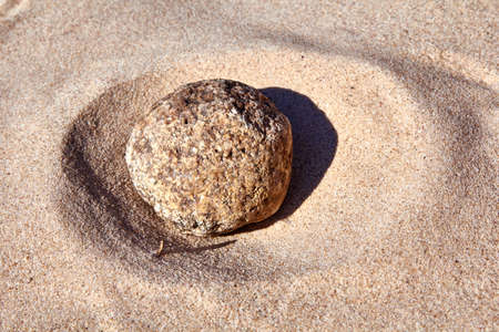 round rock in the sand on the sunny day at the Baltic sea shore
