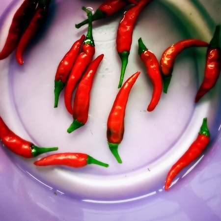 extensively: Red chillies are used extensively in Thai cooking