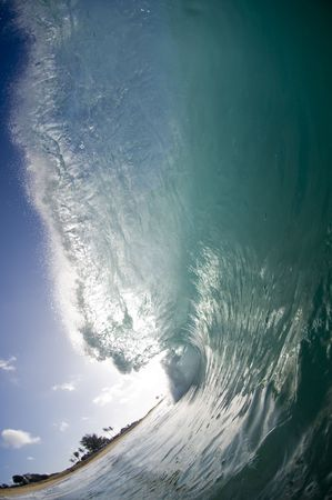 wave: giant breaking wave in hawaii