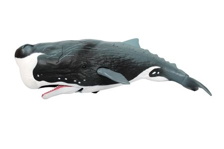 Killer whale plastic toy in white background  Stock Photo - 6689479