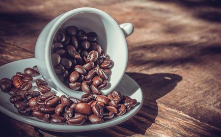 coffeetree: coffee bean