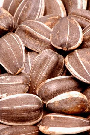 Macro photo of sunflower seeds Stock Photo