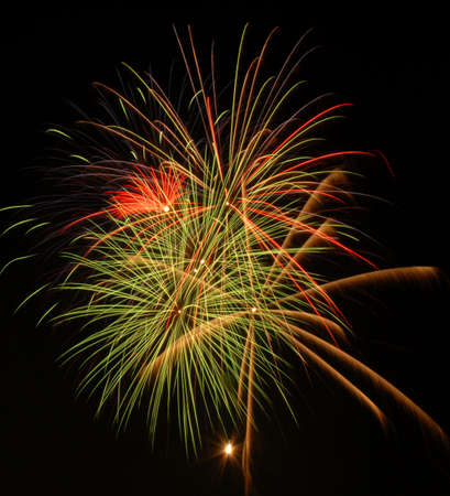 Photo of Fireworks from Canada Day 2008.