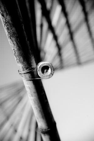 대나무 지팡이 나선형