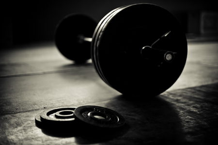 organized unit: Barbell and discs in a weightlifting gym