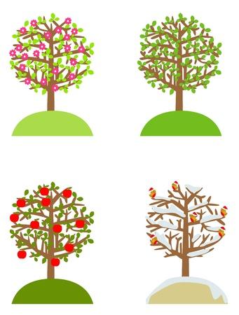 winter cherry: Four seasons tree