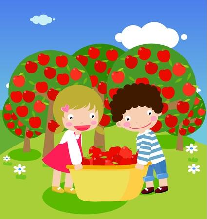 het plukken van appels Vector Illustratie
