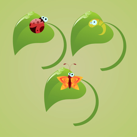 A cute lady-bug, butterfly and caterpillar sitting on green leaves Vector