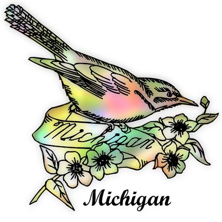 michigan state: Michigan state bird Stock Photo