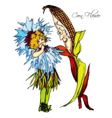 corn flower: Corn Flower Illustration