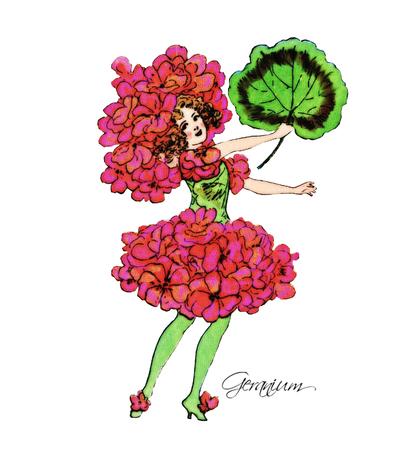 flower fields: Geranium Illustration