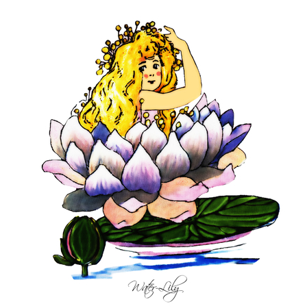 waterlily: Water-Lily