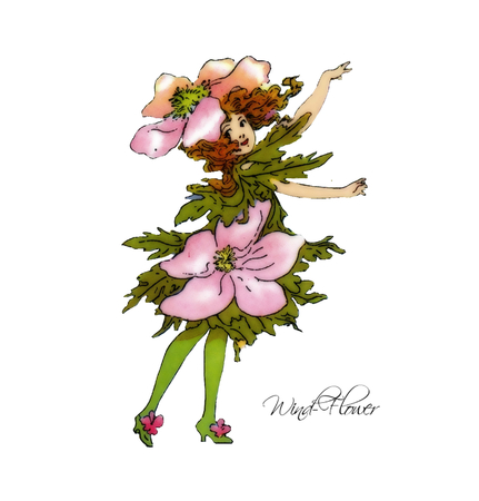 windflower: Wind-Flower Illustration