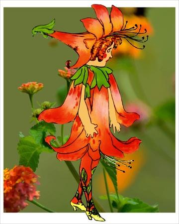 Honeysuckle Illustration