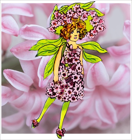 eps picture: Hyacinth Illustration