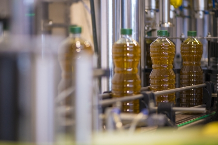 Olive oil factory, Olive Production