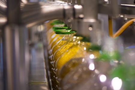 cooking oil: Olive oil factory, Olive Production