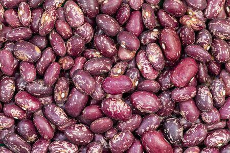 Pinta Alavesa bean close-up. Spain