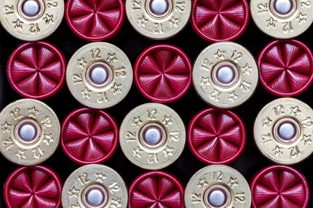 Close-up of 12 gauge shotgun cartridges used for hunting and olympic shooting