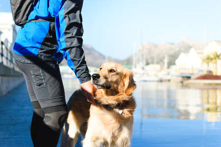 Golden Retriever dog with orange eyes, wearing a necklace with a heart accompaning a sports adult man next to water