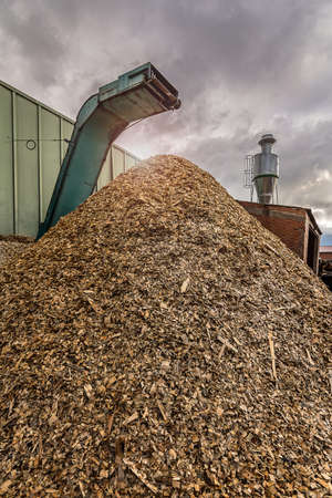 Crushing machine of wood and logs to process waste and transform into pellets, as an alternative to fossil fuel Banque d'images