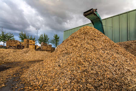Crushing machine of wood and logs to process waste and transform into pellets, as an alternative to fossil fuel Imagens