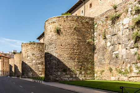 Wall of the city of Leon in Spain, Asturian style lions Фото со стока