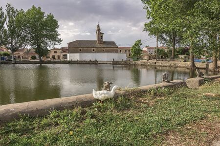 Romanesque church and lagoons of Santa María Magdalena in the town of Tejares in the province of Segovia (Spain)