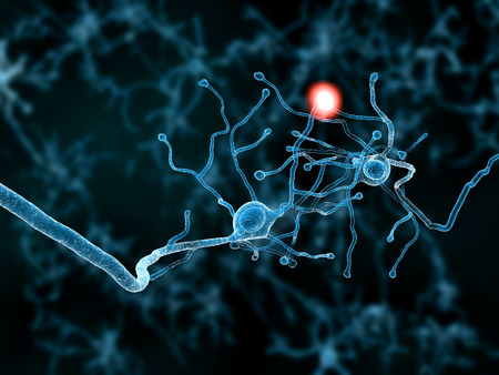 Two neurons Transmitting a signal Stock Photo
