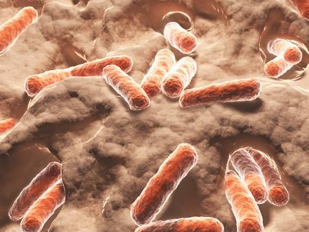 Bakterien, Bazillen Standard-Bild - 33573410