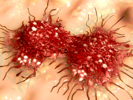 cell growth: Dividing cancer cell Stock Photo