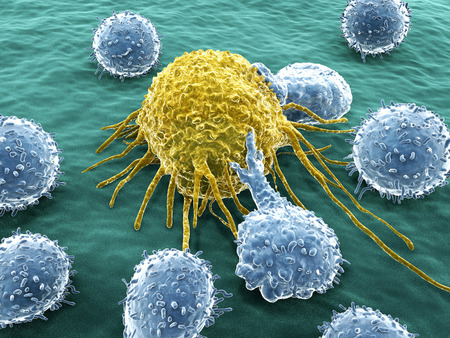 Cancer cell attacked by lymphocytes Stockfoto