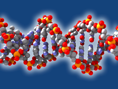 transcription: Structure of the DNA Stock Photo