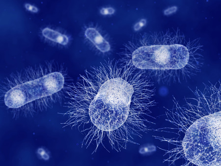 Escherichia coli bacteriën Stockfoto