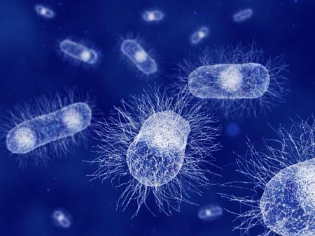 anaerobic: Escherichia coli bacteria Stock Photo
