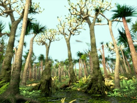 dioxido de carbono: Bosque carbonífero Foto de archivo