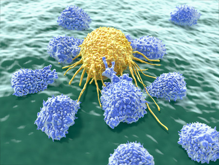 Cancer cell attacked by lymphocytes Standard-Bild